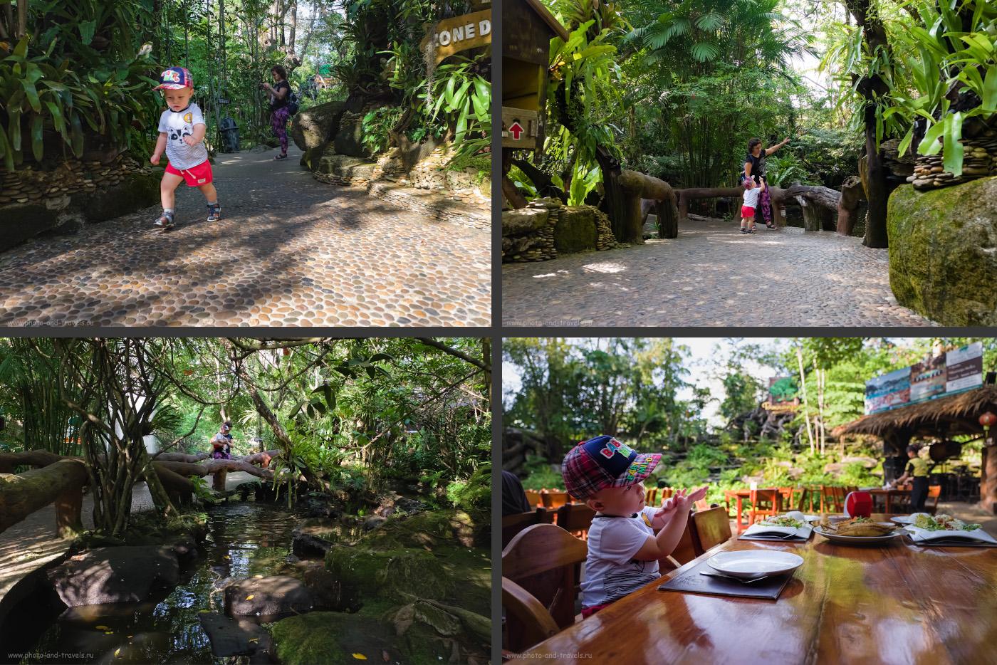 Фотография 10. Ресторан в джунглях «Tamnanpar Restaurant» в провинции Районг (Rayong) - место, куда нужно обязательно съездить, если вы окажетесь в Таиланде недалеко от курорта Паттайя. Здесь, в отличие от турецкого «Tropik Restoran» основное развлечение для детей – кормление рыб в прудиках.