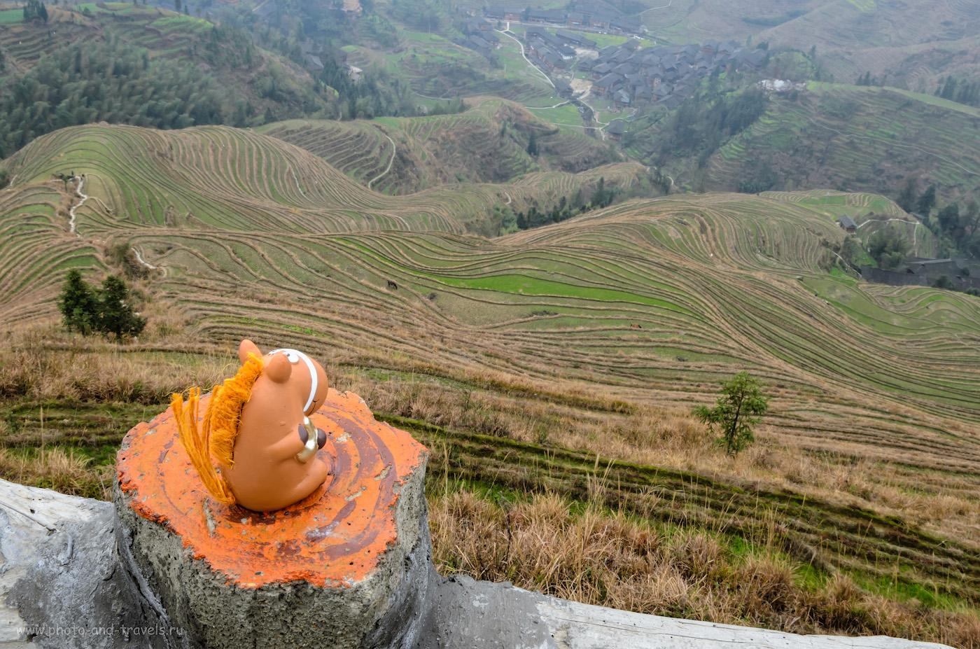 37. Коник Борька любуется рисовыми террасами Хребет Дракона на Юго-Востоке Китая. Снято на Nikon D5100 + Nikon 17-55mm f/2.8G. Параметры: 0.4, f/22, 100, 23.
