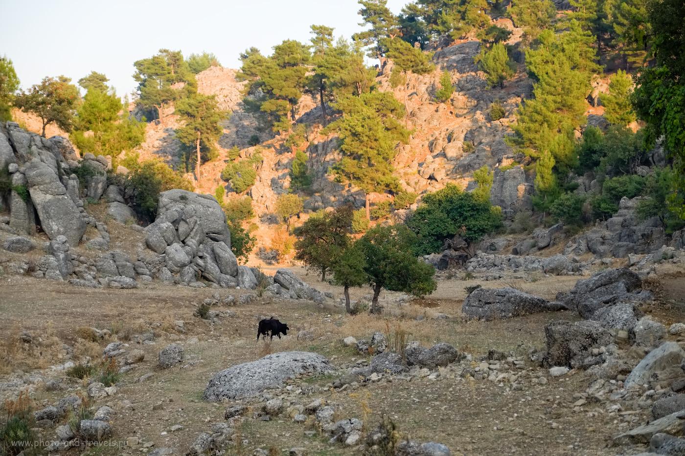 15. Такие пейзажи начинаются за «конечной точкой». Как мы ездили на экскурсию в Сельге из окрестностей Сиде. Чудесные места в Турции для самостоятельного путешествия на машине. 1/640, 2.8, 200, -0.33, 55.