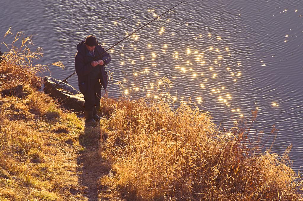 35. Ловец солнца. Фото снято на тушку Nikon D5100 и телеобъектив Nikon 70-300mm f/4.5-5.6G.