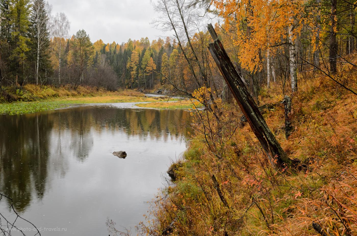 9. Таёжная река Серга. Поход выходного дня в парк осенью. 1/60, 8.0, 250, -1.0, 24.