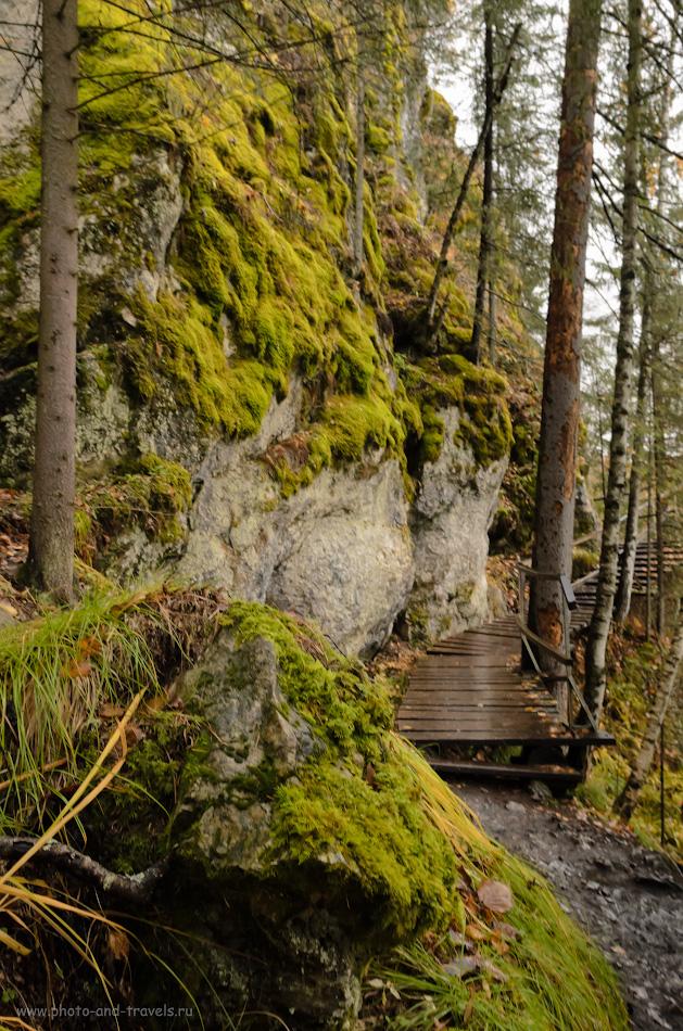 18. Такой мох на скалах по маршруту встречается часто. 1/30, 8.0, 640, -1, 17.
