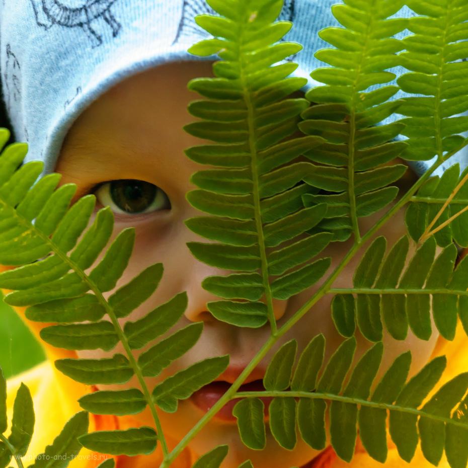 Фото 8. Чем еще заняться в лесу на прогулке, как не организацией фотосессии? 1/100, 5.6, -0.3, 50.