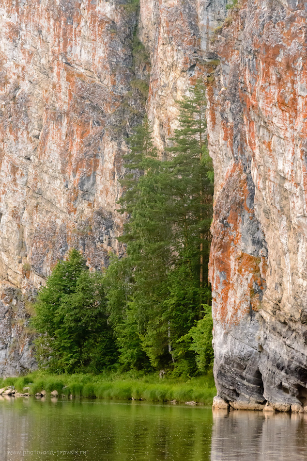 19. Дерево у подножия скалы Омутной камень. 1/320, 8.0, 6400, 195.