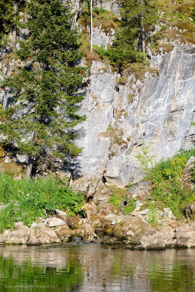 Фотография 14. Источник Синюха у реки Серга недалеко от Аракаевской пещеры. Другое название – Аракаевский грифон. 1/160, 10.0, 125, 66.