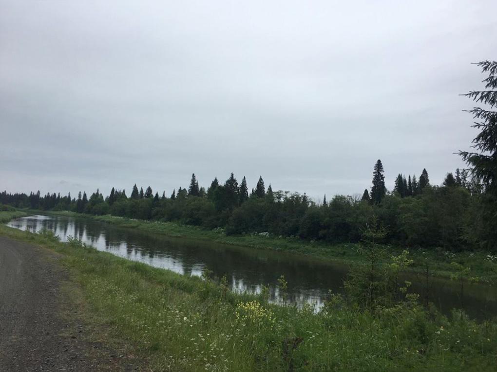 Фото 24. Таёжная река Сылва. Дикие места по пути из Перми к Омутному камню. Снято на смартфон.
