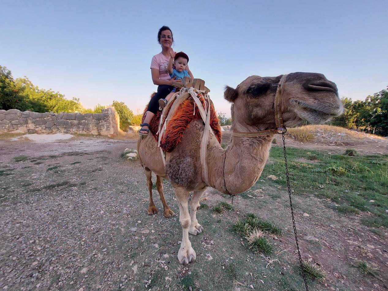 26. Около пещер Рай и Ад (Cennet ve CehennemMağaraları) туристы могут покататься на верблюде. Что интересного посмотреть рядом с Кызкалеси? Отзыв о самостоятельном путешествии на авто по Турции.
