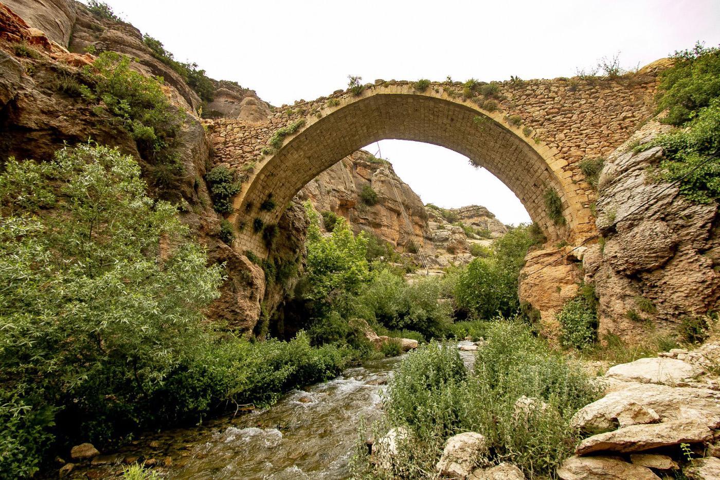 22. Исторический мост (Tarihi köprü) в каньоне Сасон.