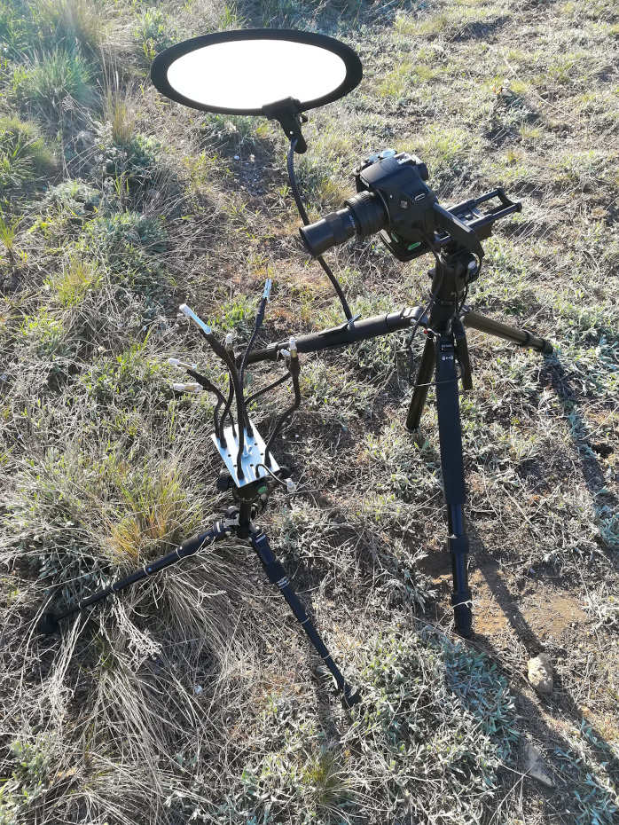 """5. Так выглядит отражатель и держатели для веточек, чтобы не было смаза из-за ветра. Камера Canon 650D с фиксом Вега-11У, ввернутом в фокусировочный геликоид Pixco M42/M42 25-55mm на макрорельсах Velbon Super Mag Slider. Штатив для держателей - Neewer M225 CK30, для камеры - DiC&MiC P-303 с головой В-4 (на """"Алиэкспресс"""" их продают под торговой маркой Innorel)."""
