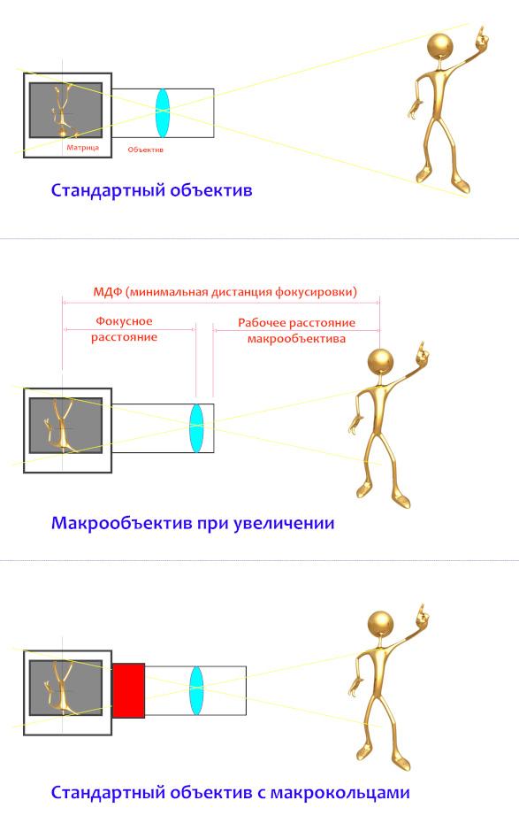 4. Схема, поясняющая, как выдвигается вперед линзовый блок при увеличении масштаба съемки, что такое МДФ (минимальная дистанция фокусировки) и рабочее расстояние макрообъектива.