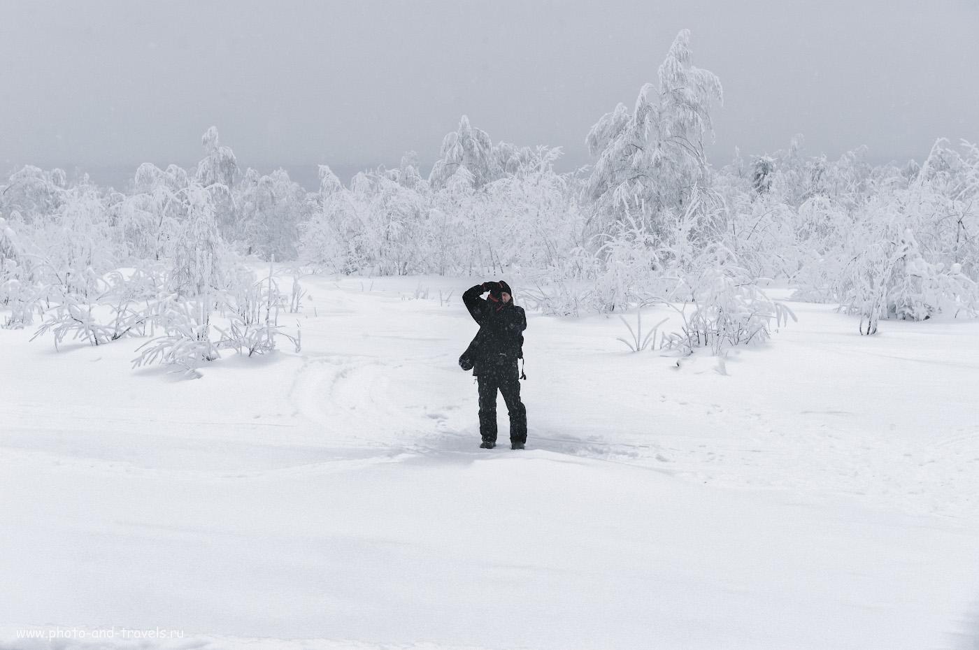 Фото 8. По пути к скалам на горе Крестовая. Что интересного посмотреть в Пермском крае. 1/160, 10.0, 1100, +2.0, 66.