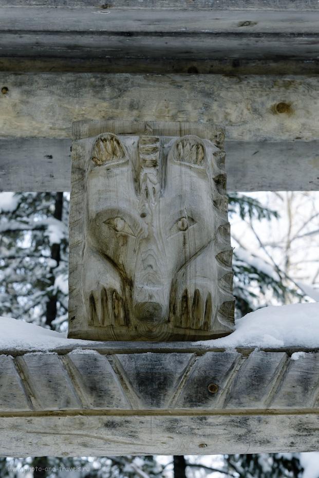 25. Медведь у Смотровой площадки №2 на камне Великан. 1/125, 8.0, 900, -0.67, 58.