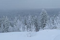 Vo vremja komandirovki v Permskij kraj zimoj 2014 goda ja fotografiroval krasivyj pejzazh so smotrovoj ploshhadki Belye kamni na okraine Gremjachinska. Mesto ochen' zhivopisnoe.