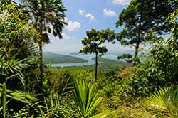 Vo vremja poezdki za rulem po Tailandu v 2015 godu my popali v gorod Ranong. V ego okrestnostjah posmotreli zatoplennoe mestorozhdenie olovjannoj rudy.