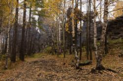Po puti v Neviansk turisty mogut podniatsia na goru so skalami Sem bratev Pravda pokhod zaimet ves den i sil na SHaitan-kamen ne ostanetsia Karta marshruta i poiasnenie kak doekhat.