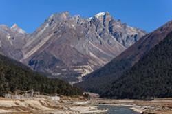 Indiiskie Gimalai Poezdka v krasiveishuiu dolinu Yumthang Valley na granitse s Kitaem Ushchelia i reki Nochevka v derevne Lachung Fotootchet o vstreche s iakami na gornykh sklonakh.